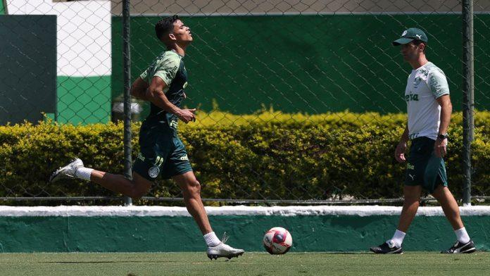 Danilo Barbosa, meio-campista do Palmeiras, na Academia de Futebol — Foto: Cesar Greco / Ag. Palmeiras