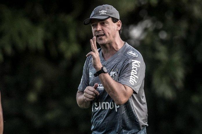 Fernando Diniz comandou apenas um treino antes de estreia pelo Santos
