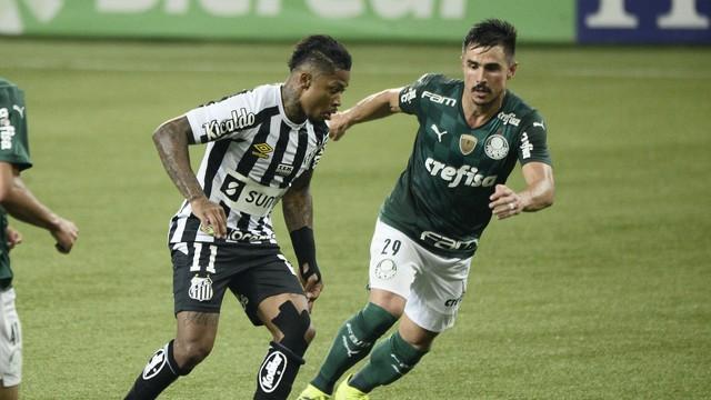 Marinho e Willian disputam jogada no clássico Palmeiras x Santos (Foto: Marcos Ribolli)
